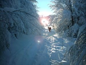 De la neige comme dans le temps...