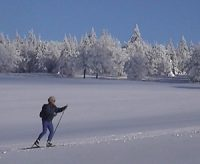 Skating in the Vosges